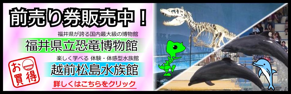 越前松島水族館・恐竜博物館 割引前売り券